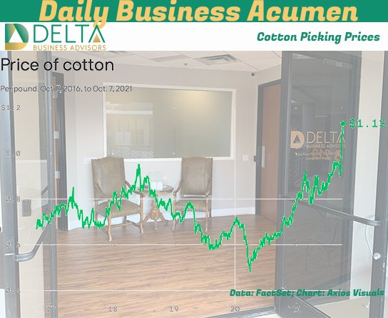 Cotton Prices Up